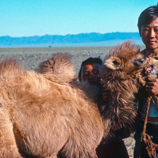 Mongolia102.jpg
