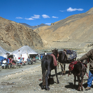 Ladakh564.jpg