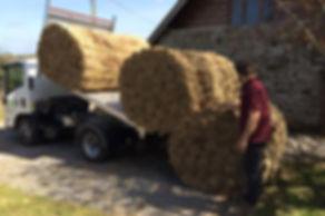 New thatching reed arriving on site, Torrington, North Devon. Mark Harrington master thatcher
