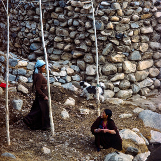 Ladakh560.jpg