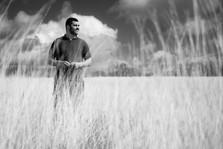 Fields of Grey