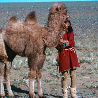 Mongolia103.jpg