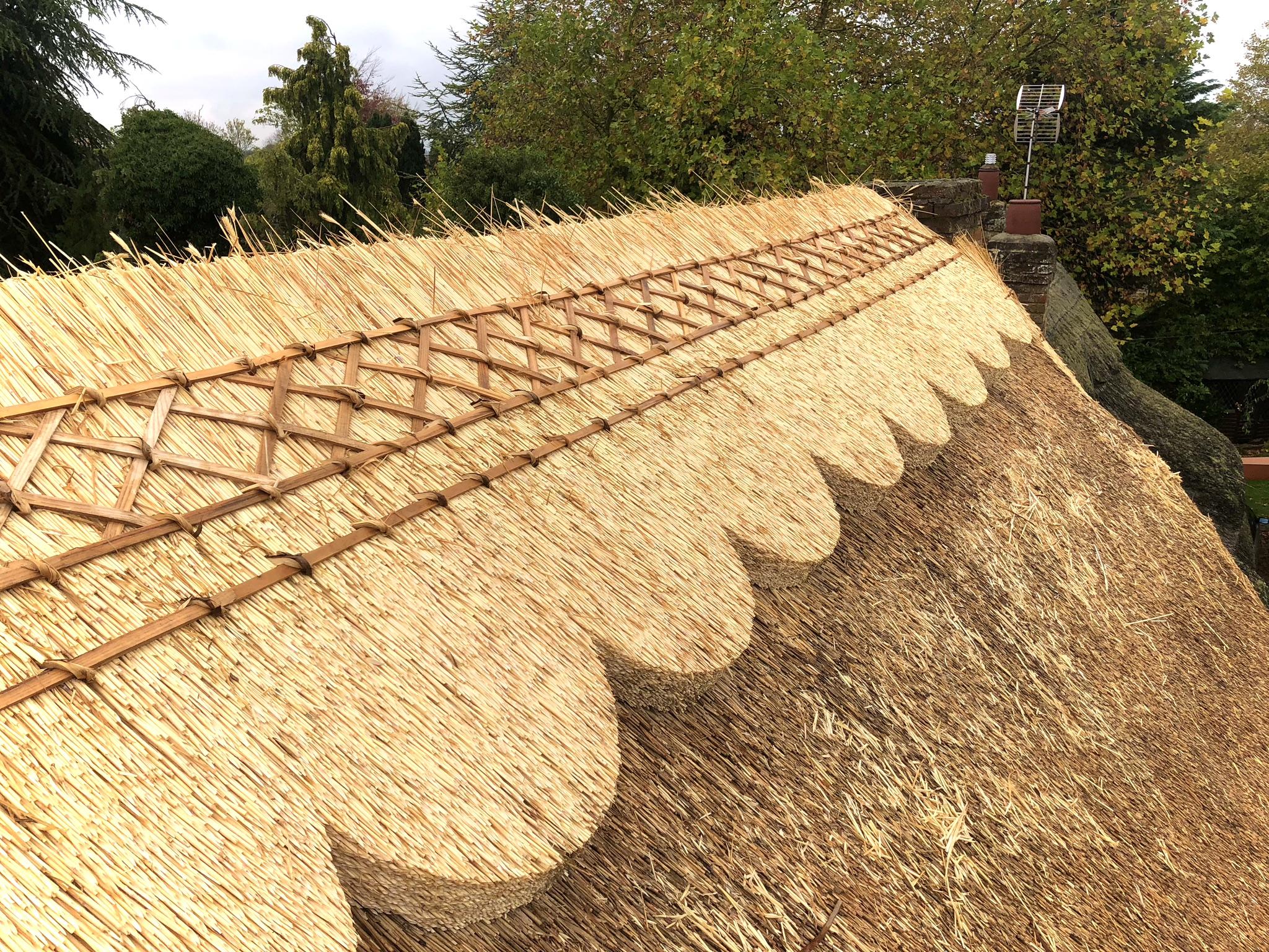 Patterned Thatch Ridge