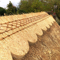Patterned ridge, Buckinghamshire