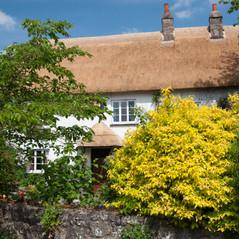 Newly thatched cottage, Devon