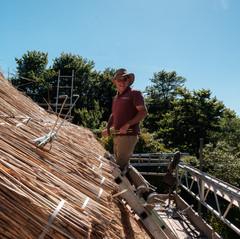 Thatched roof, Barnstaple, Devon