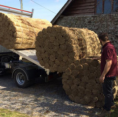 Thatching reed arriving