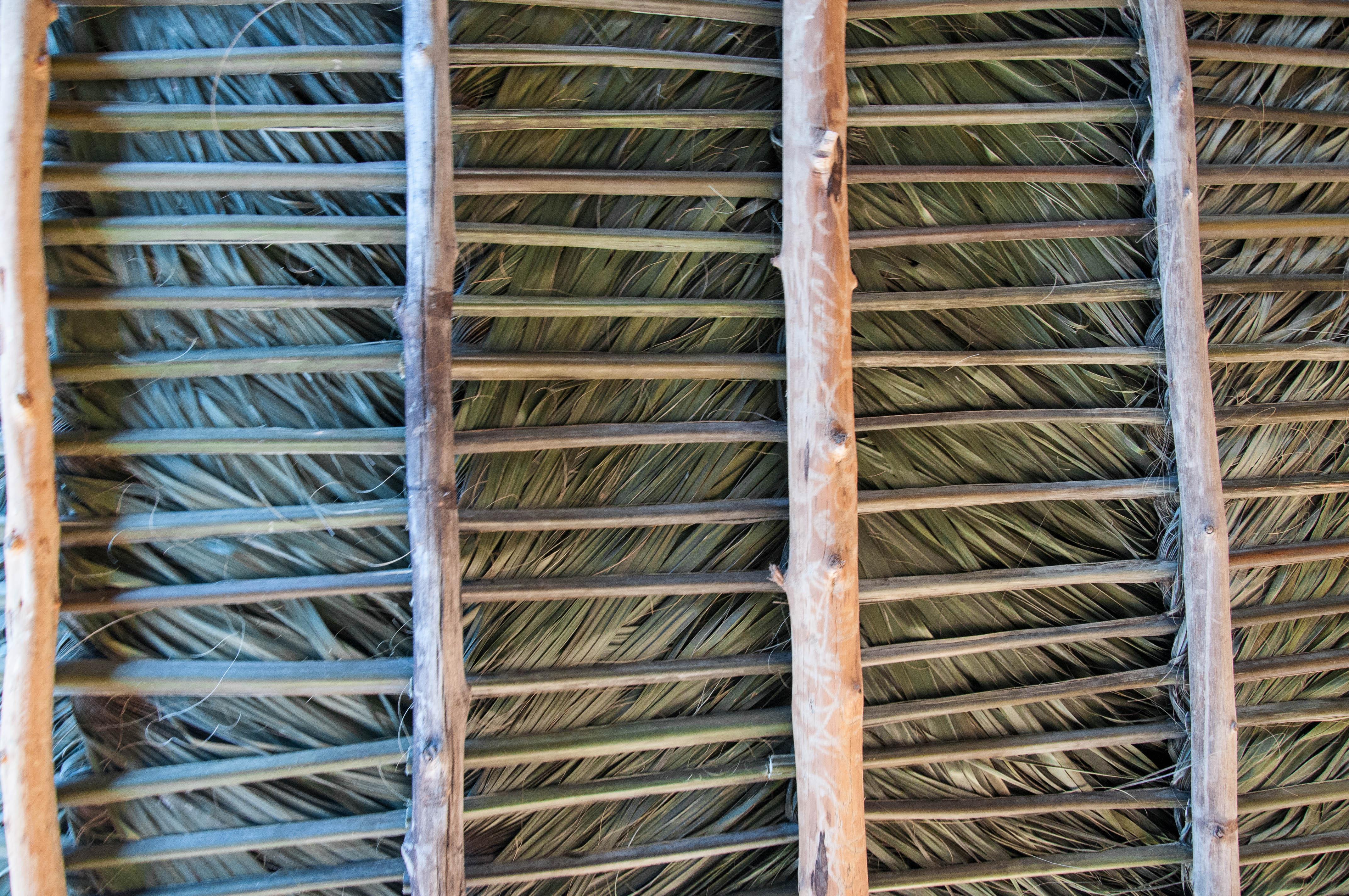 Palm Thatch Underside, Maui, Hawaii