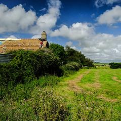 Thatched Cottage work, Bideford, Devon