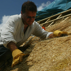 Thatching a roof, Tiverton.