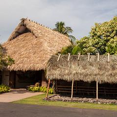 Thatched huts, Maui, Hawaii.