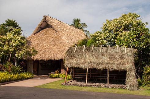 Thatched Construction, Maui, Hawaii