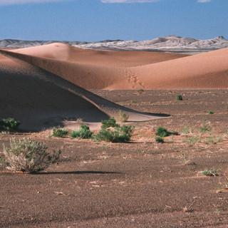 Mongolia067.jpg