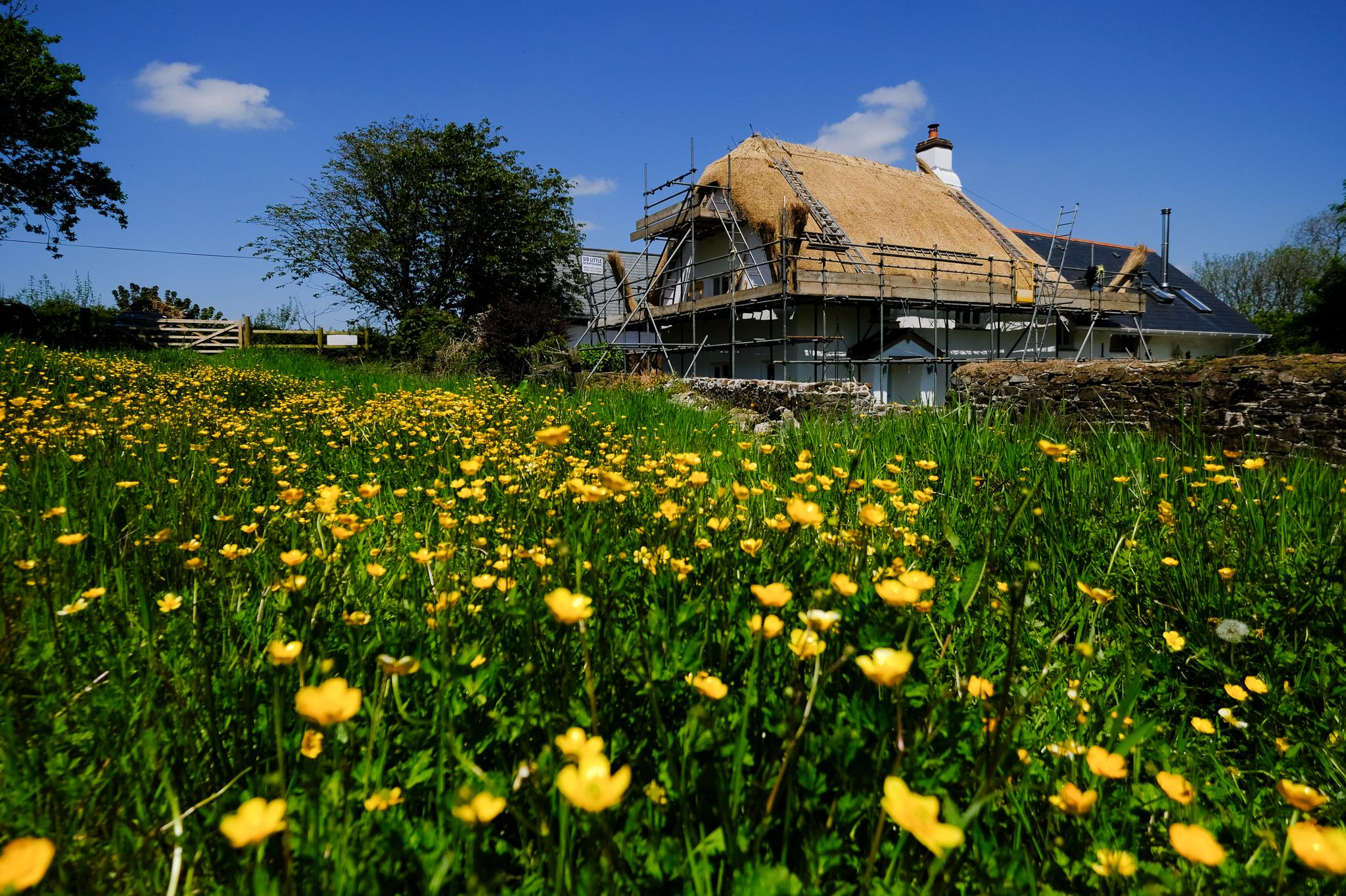 Water Reed Thatch, Torrington, Devon