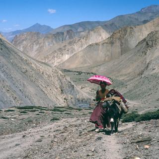 Ladakh567.jpg