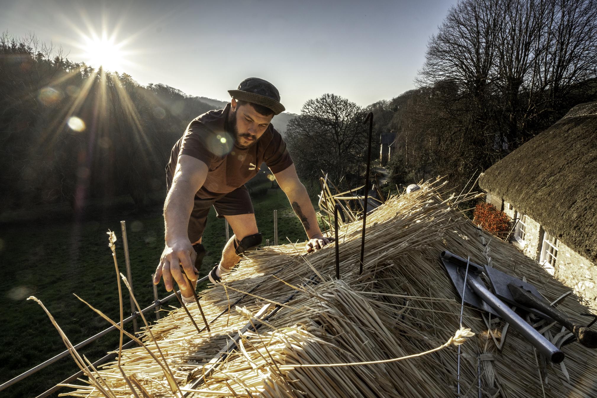 Finishing a wheat ridge