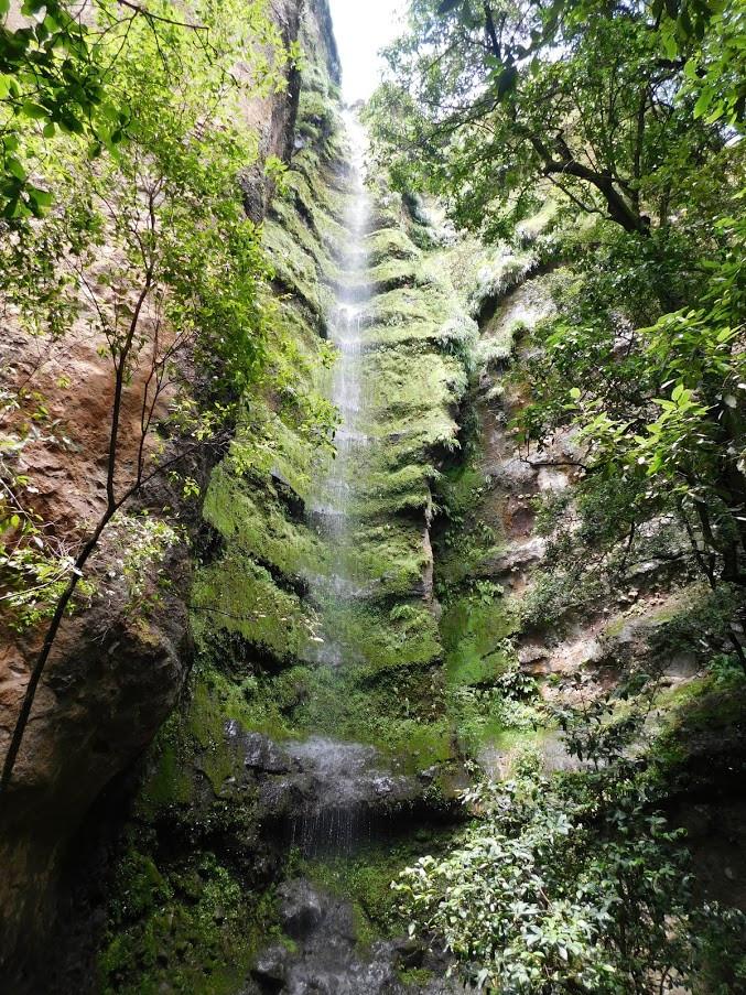 cascada tepoztlan