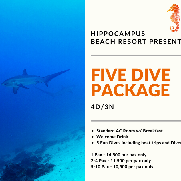 FIVE DIVE PACKAGE