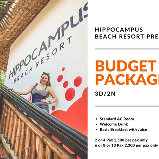 Budget Package.png