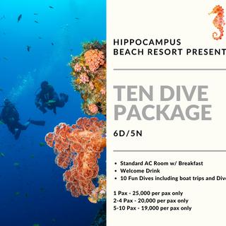 Ten Dive Package.png