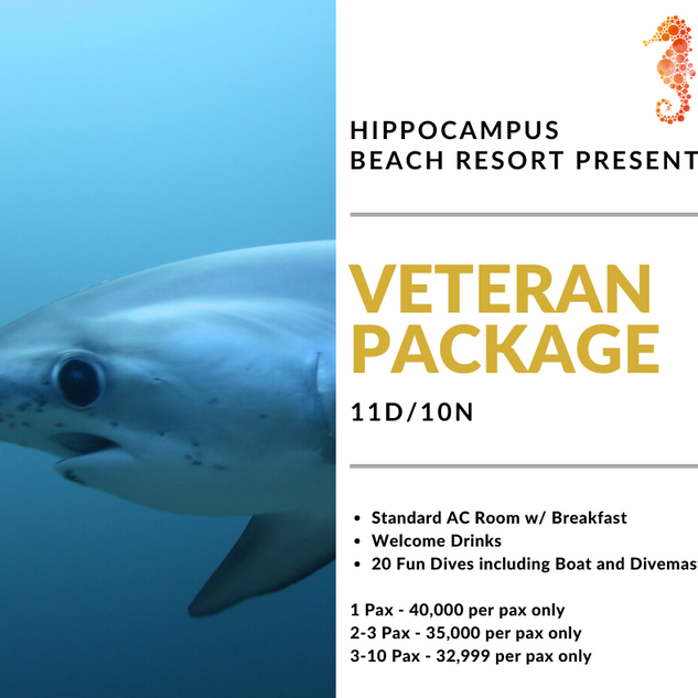 Veteran Dive Package (1).png