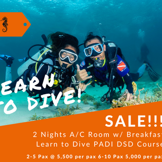 LEARN TO DIVE! (1).png