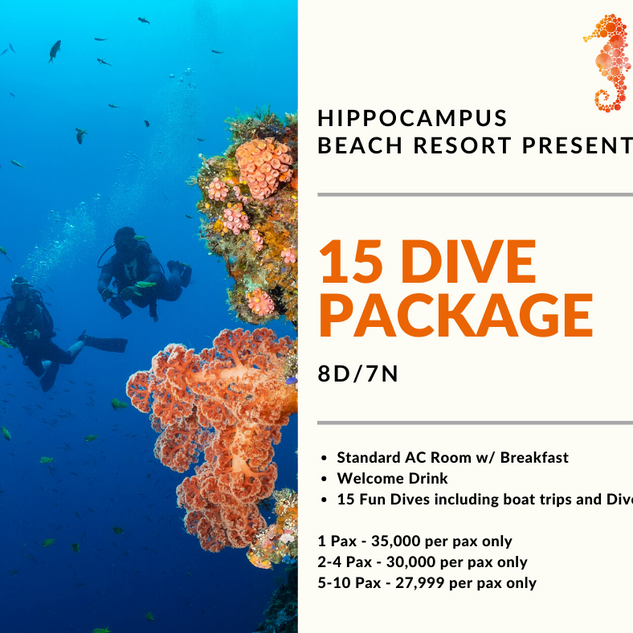 15 Dive Package (1).png