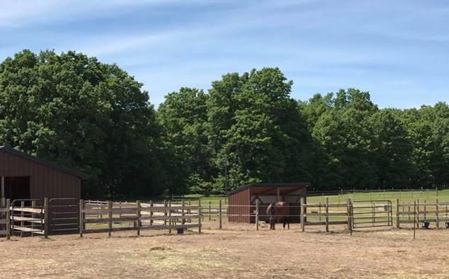 Sundog Ranch
