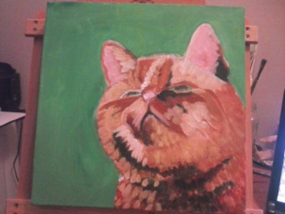 Marmalade Cat