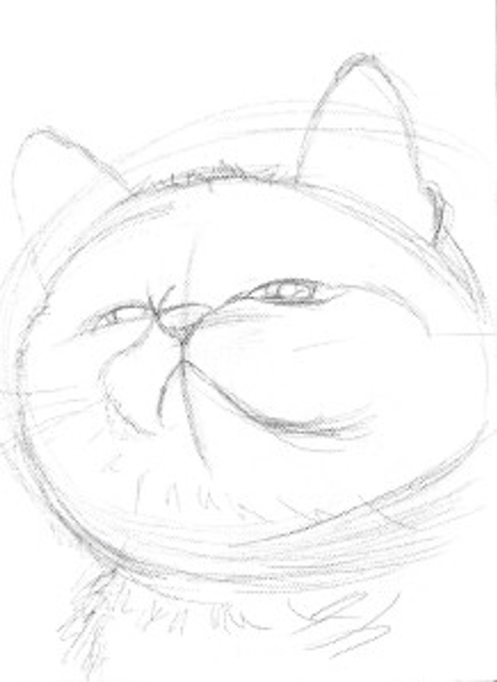 Artwork sketch