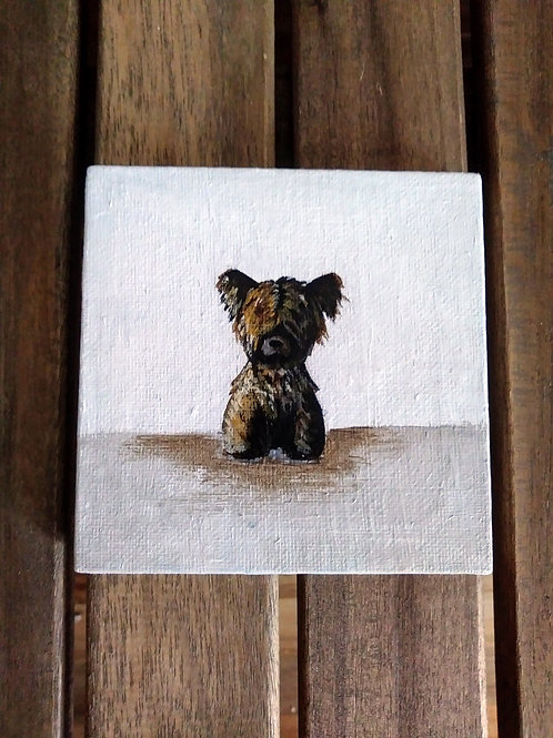 Skye Terrier mini canvas _- one of a kind