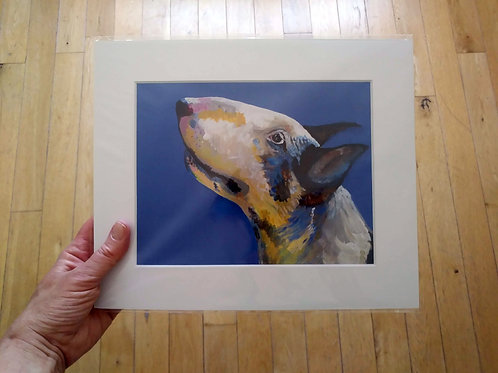 Archie - English Bull Terrier Print