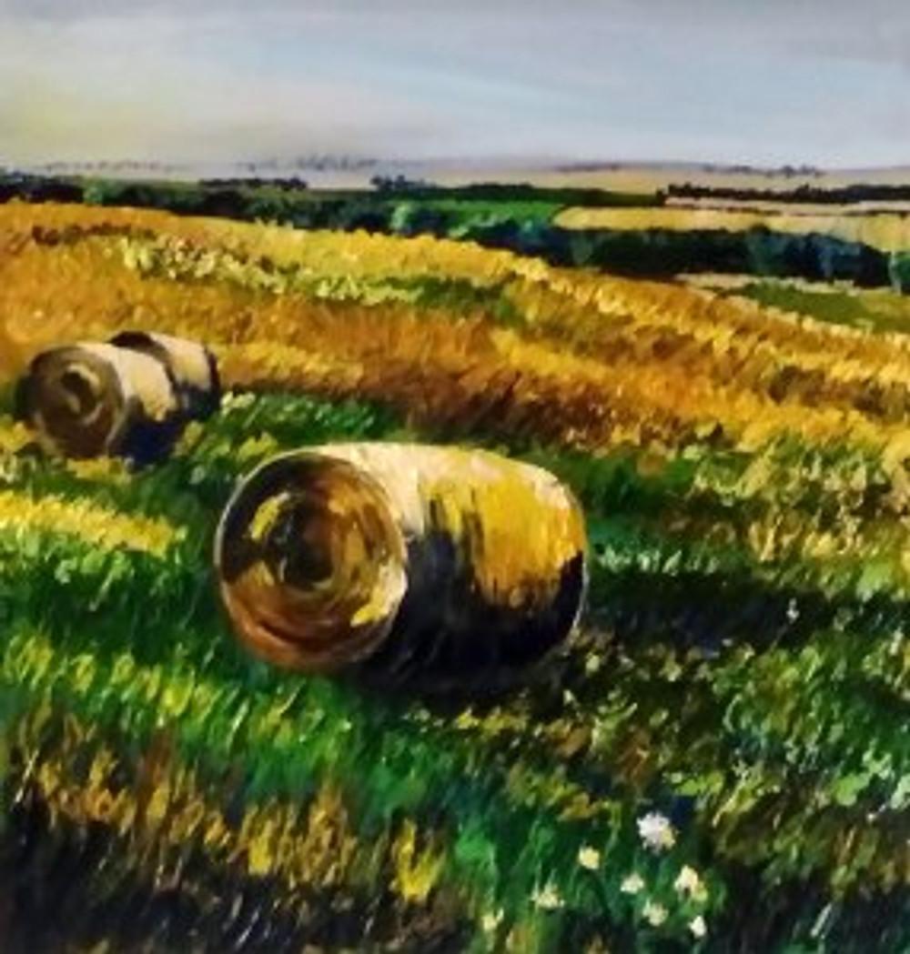 Speyside hayfield No2
