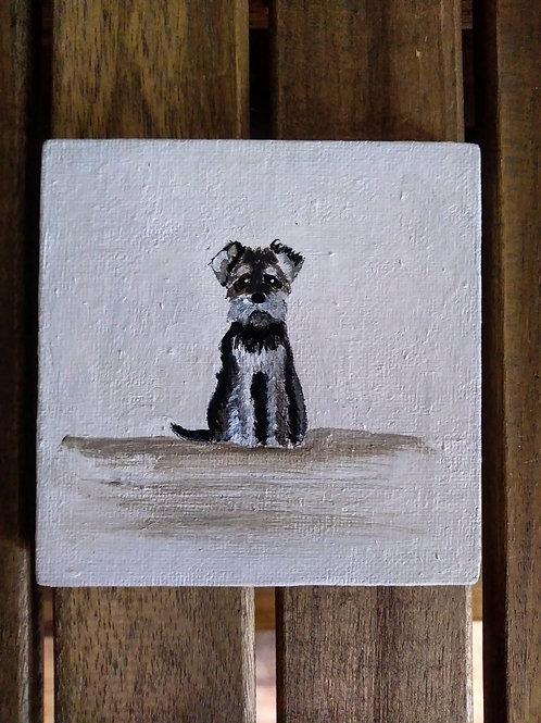 Miniature Schnauzer mini canvas - one of a kind