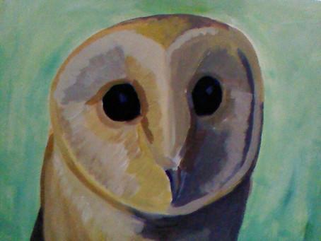 WIP – Barn Owl