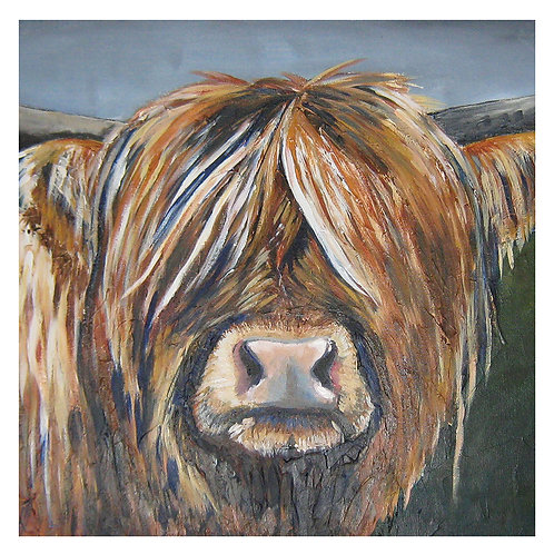 'Hazel' Highland Cow 'blank inside' greetings card