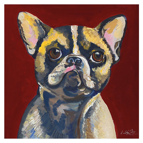 'Winnie' French Bulldog 'blank inside' greetings card