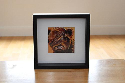 'Baby Coo' box framed print