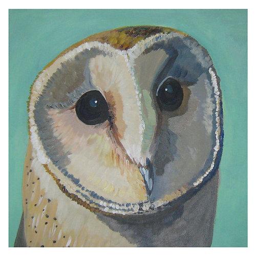 'Ossian' Barn Owl 'blank inside' Greetings Card