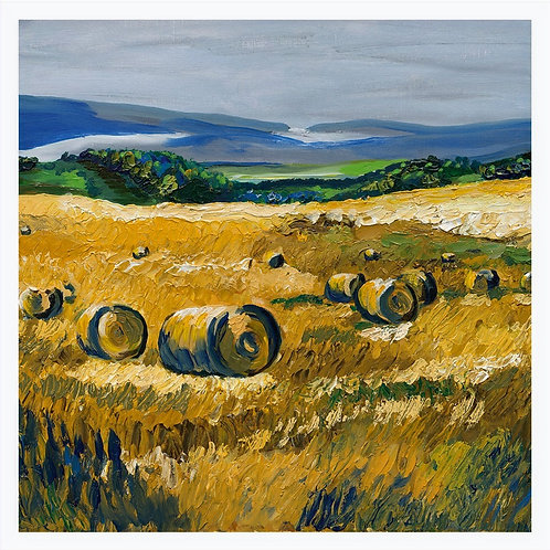 Speyside Hayfield 'blank inside' greetings card