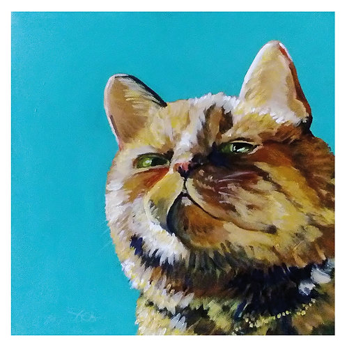 Marmalade cat 'blank inside' greetings card