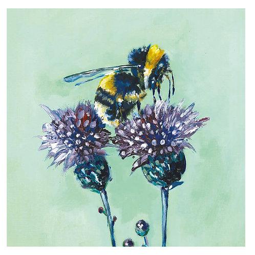 'Bertie' Bee, 'blank inside' greetings card