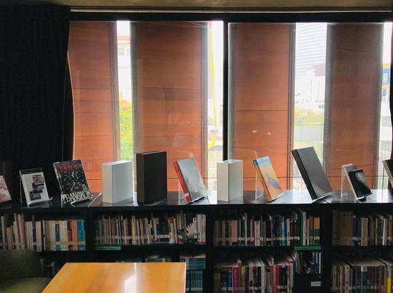 ORLANE Installation view
