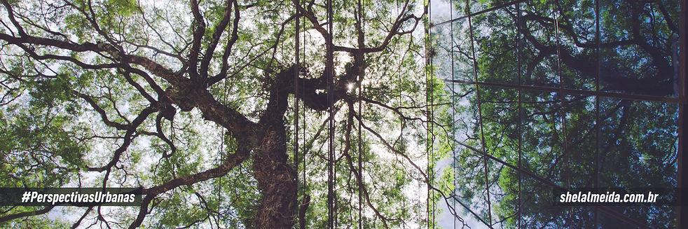 Foto 2 - Av. Norte Sul_quadro B_AF.jpg