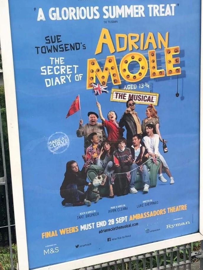 2019 The Secret Diary of Adrian Mole the Ambassadors Theatre
