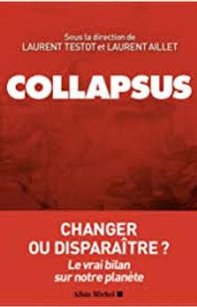 COLLAPSUS.jpg