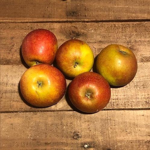 Cox's Apples (per 6 pack)