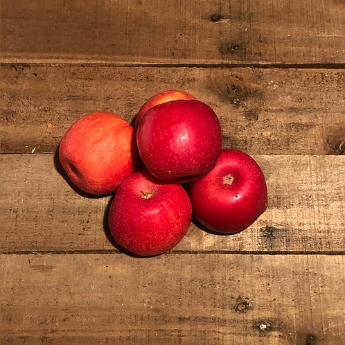 Pink Lady Apples 6 pack