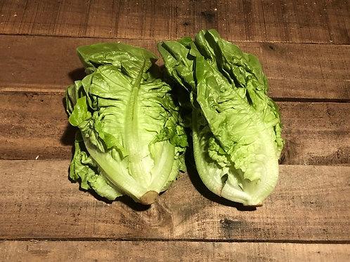 Little gem Lettuce (per 2 pack)