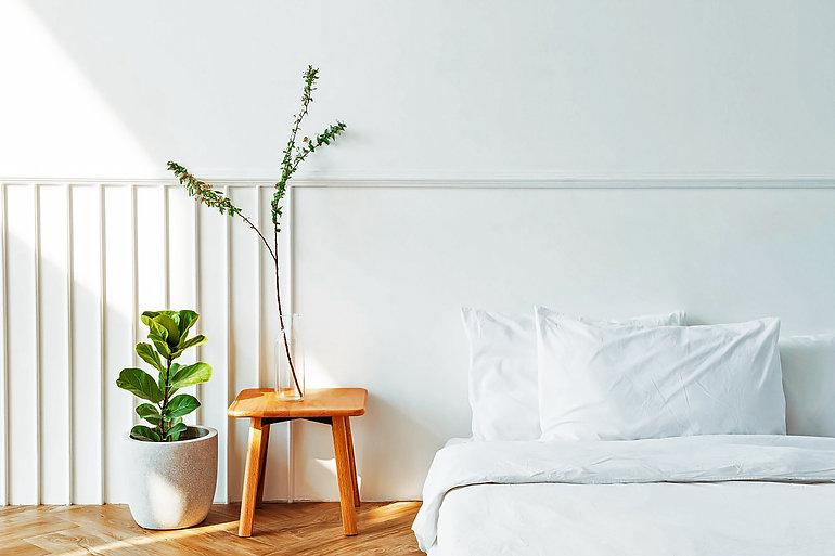 house-plants-by-mattress-floor_edit.jpg